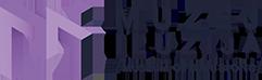 Museum of Illusions Logo